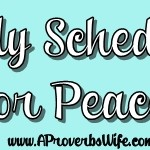 Daily Schedule for Peace