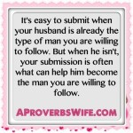 A Proverbs Wife