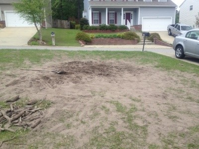 Diy Yard Renovation Ideas Cost A Proverbs Wife