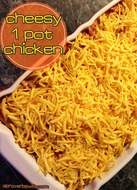 Cheesy One Pot Chicken - AProverbsWife.com