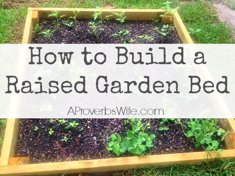 How to build a raised vegetable box a proverbs wife for How to build raised garden bed